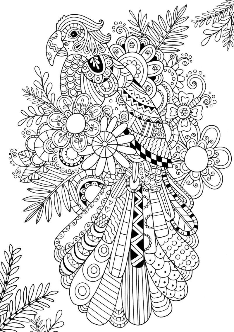 Najbardziej Popularny Bardzo Trudne Kolorowanki Kolorydladzieci